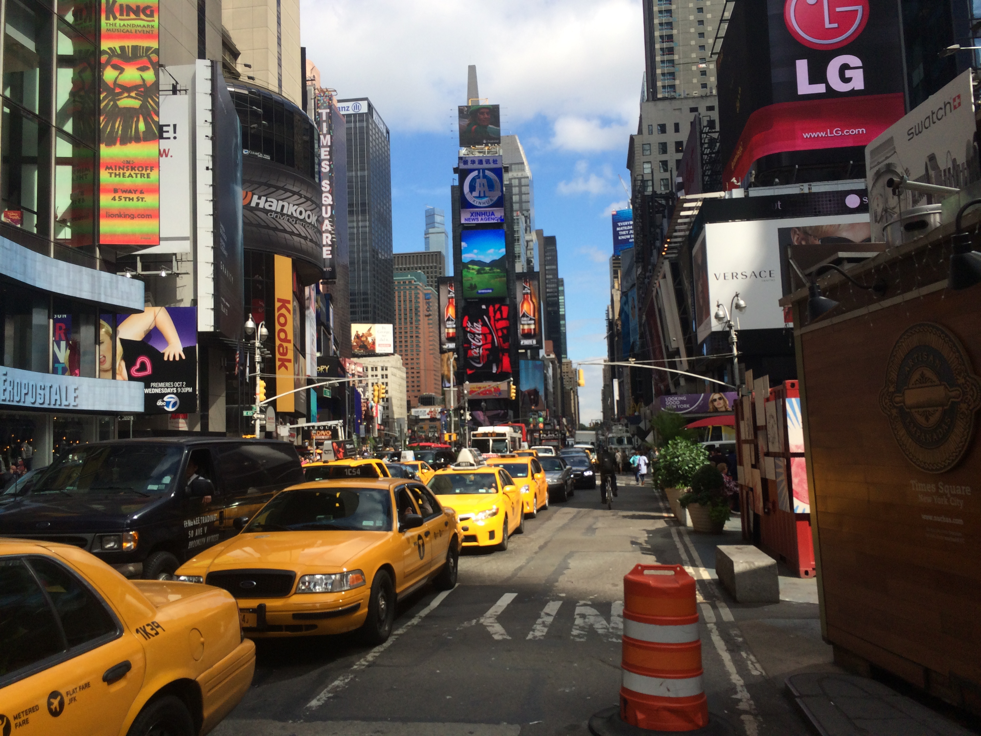 Private New York City Tours in English
